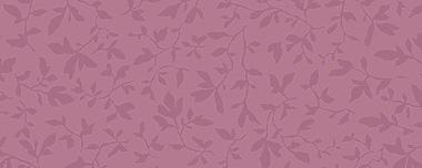 Орхидея 7015