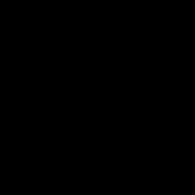 1545 Калейдоскоп черный