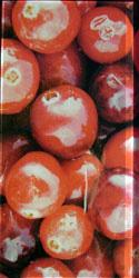 декор Berry 2 (клюква)