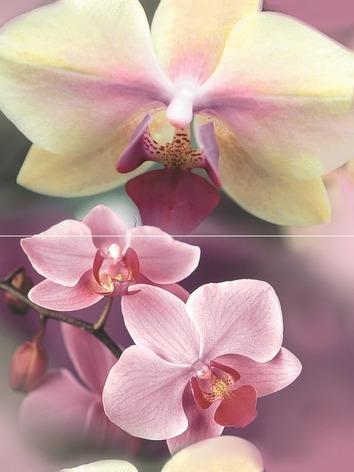 Панно Blossom P2D183 (из 2-х пл.)