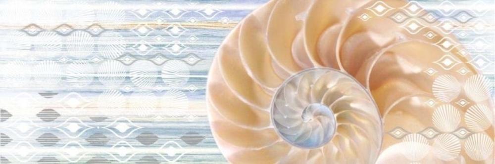Декор Бриз ракушка (ВС11БР624)