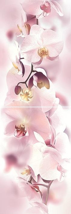 Панно Orchid P2D135 (из 2-х пл.)