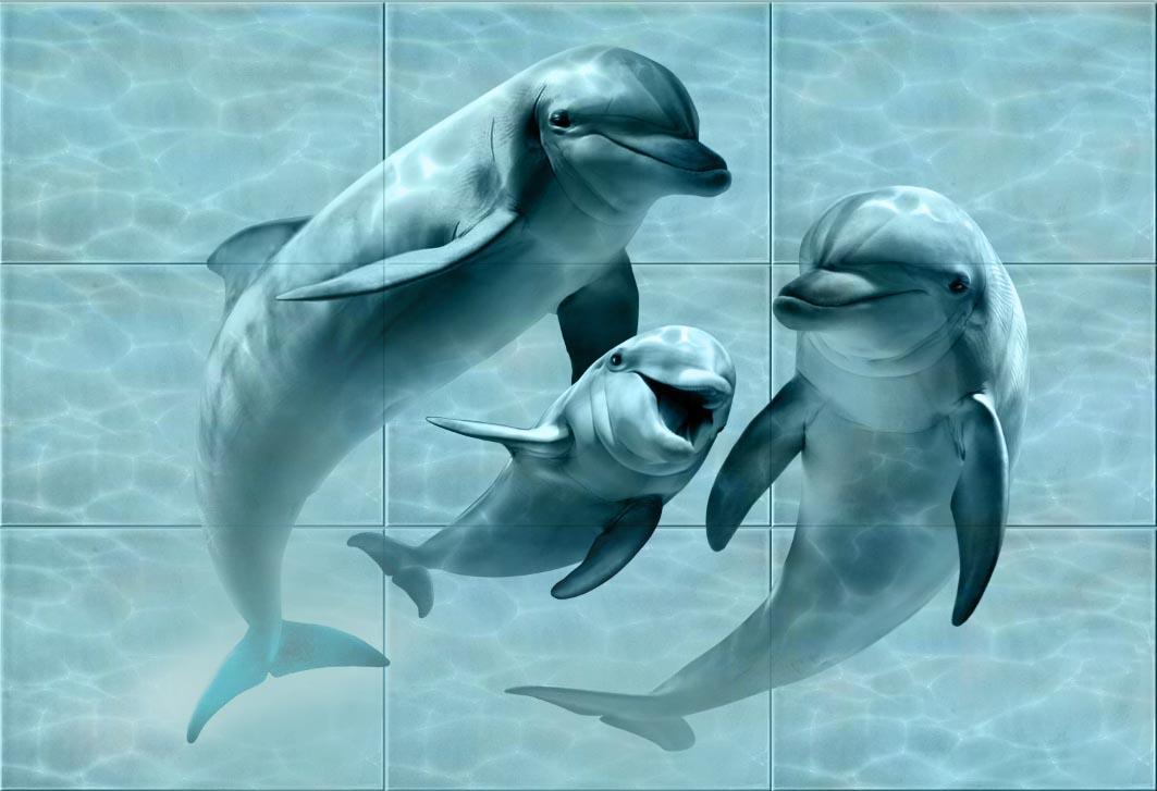 Панно Аква (Дельфины)