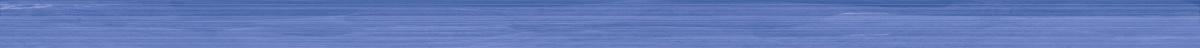 Бордюр Mono blue 2х50