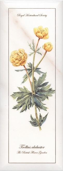 Декор Ноттингем Цветы грань NT\A86\15005