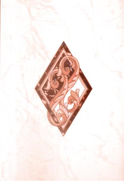 Декор карелия коричневый