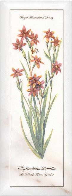 Декор Ноттингем Цветы грань NT\A88\15005
